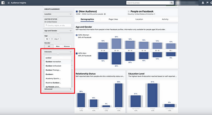 Deciding on a niche to focus on in Facebook Audience Insights