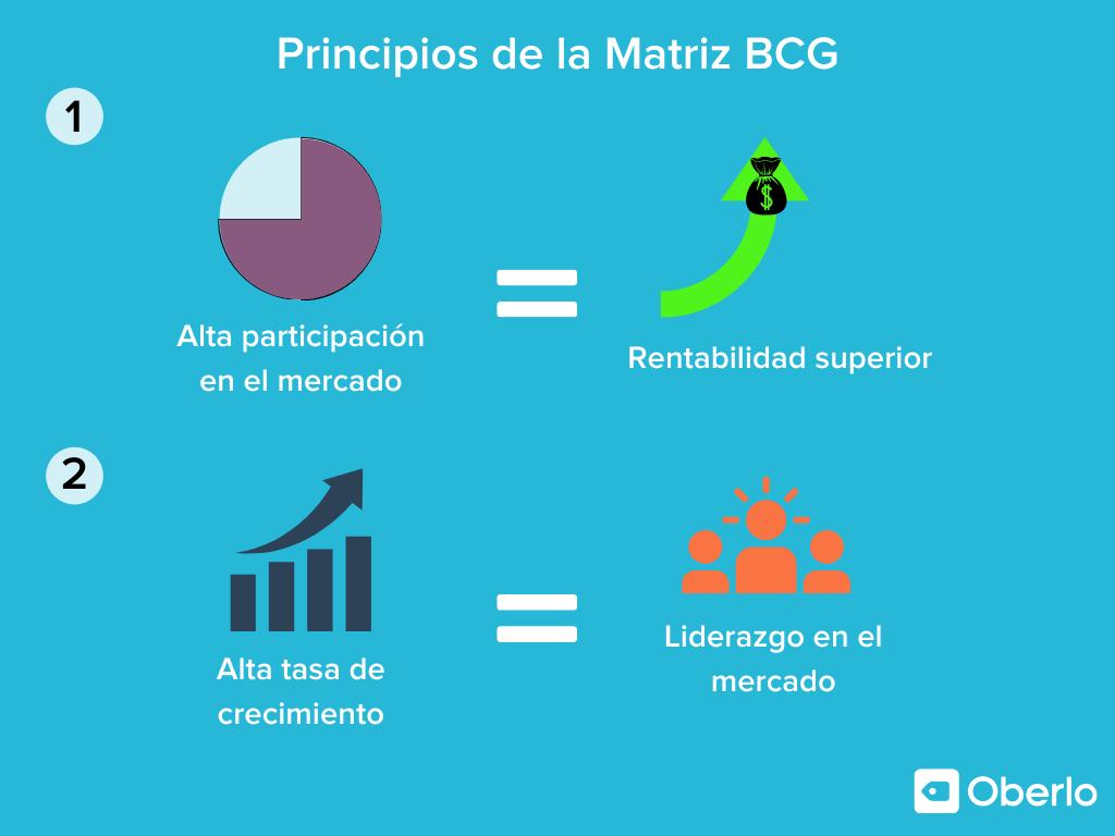 matriz bcg definicion y principios