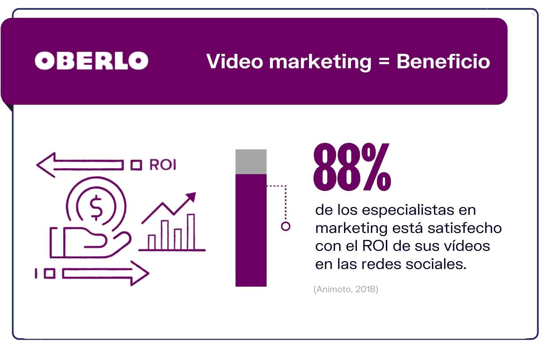 Usuarios de video marketing