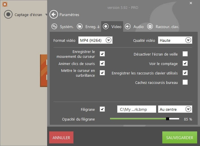 logiciel enregistrement video icecream recorder
