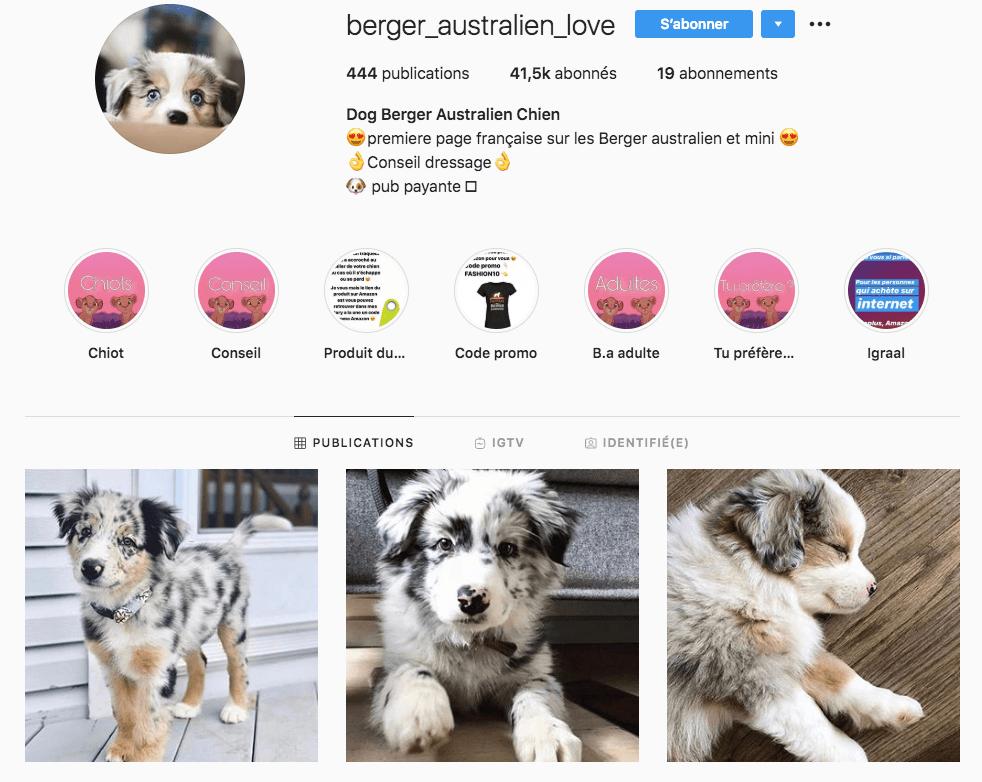 compte instagram populaire