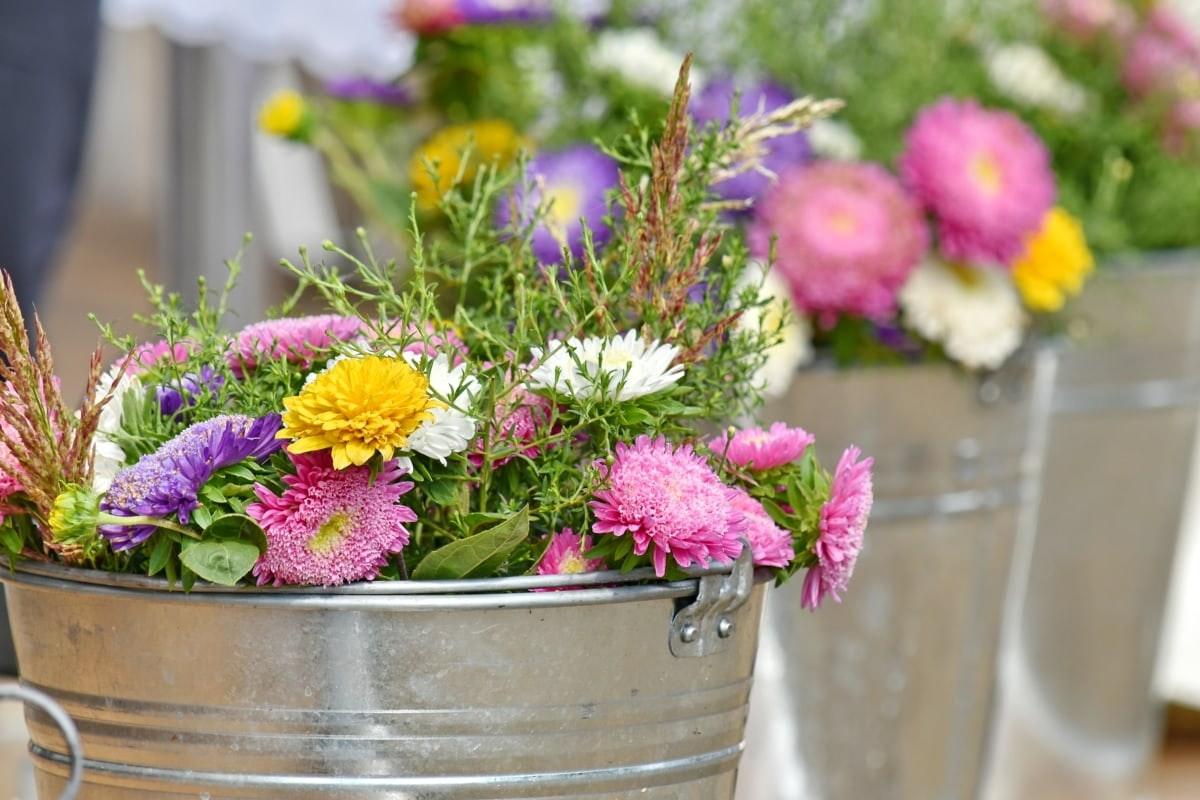 Photos fleurs du marché