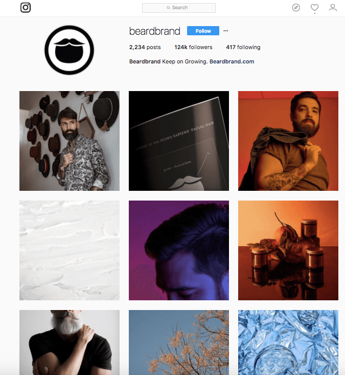 guadagnare con instagram BearBrand