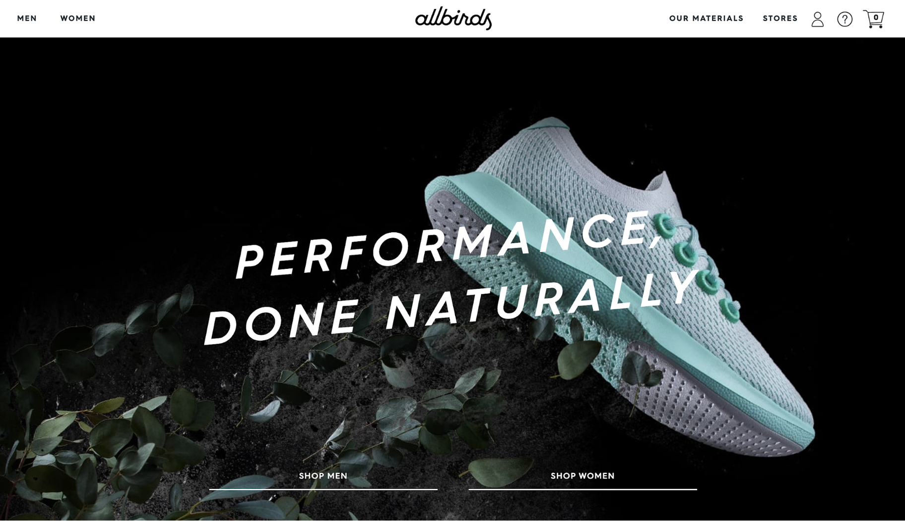 Small Business Website Example: Allbirds