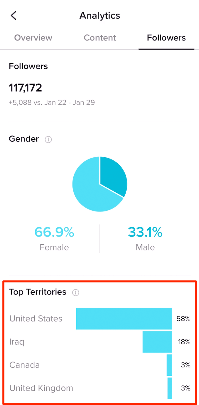 TikTok Follower Analytics