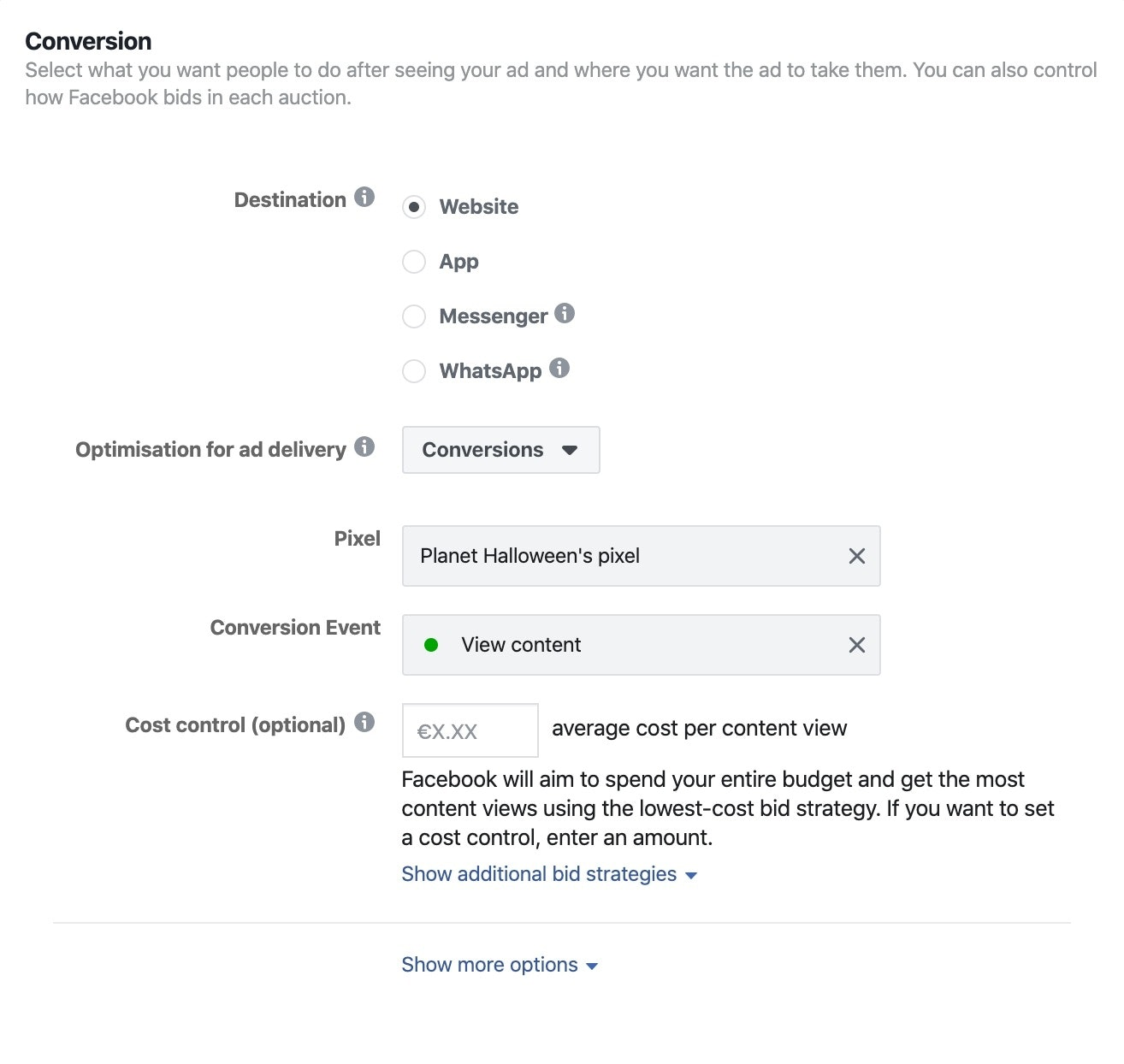 Screenshot setting up Facebook ads