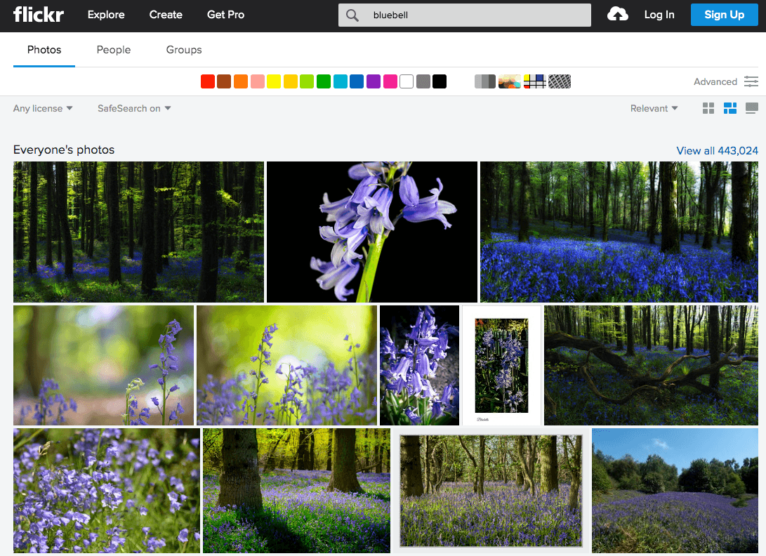 image search engines Flickr