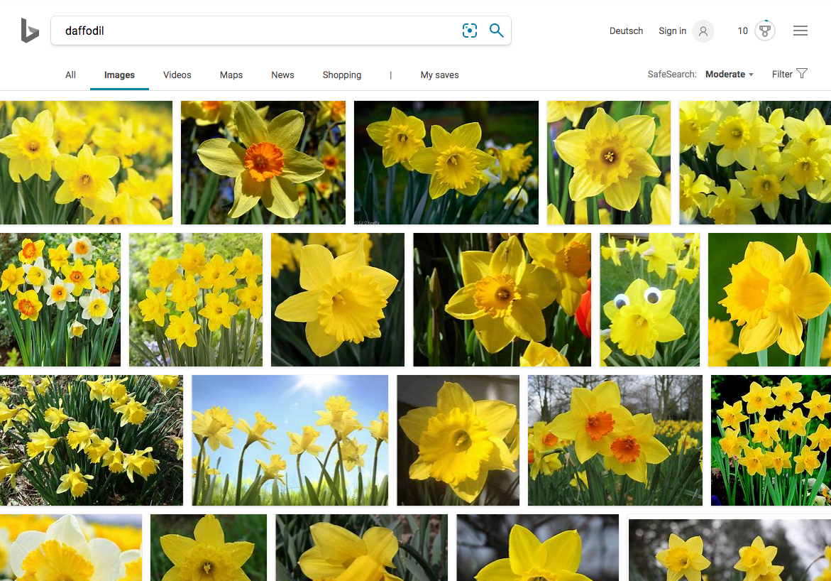 best image search engine Bing