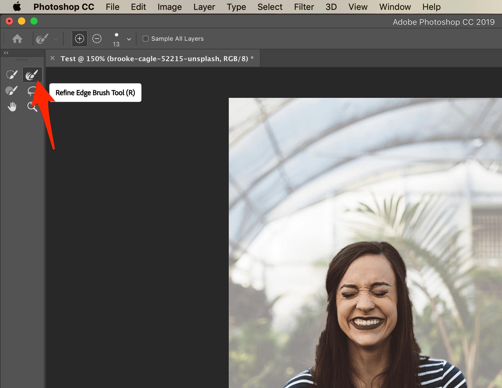 Photoshop Refine Edge Brush Tool