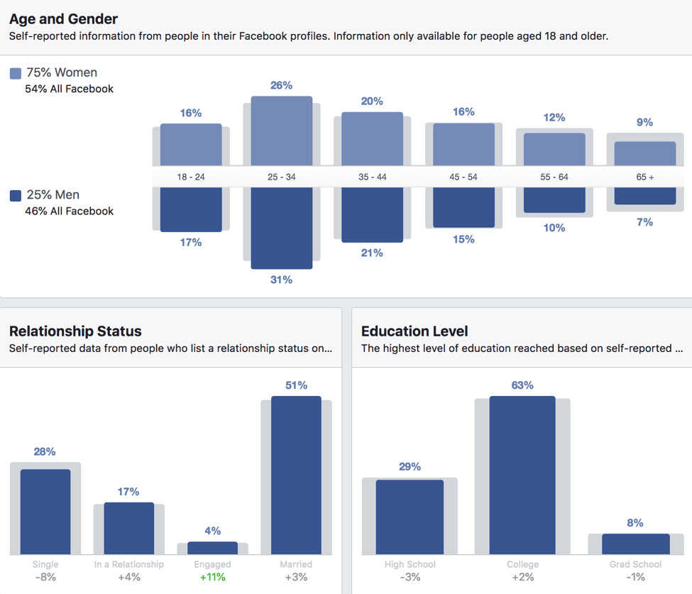 audience information facebook insights