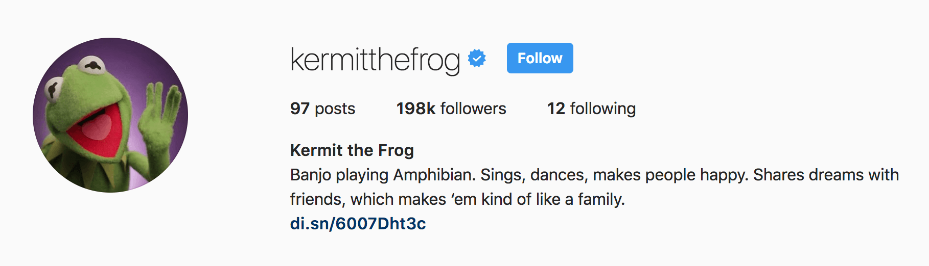 kermit the frog cute instagram bios