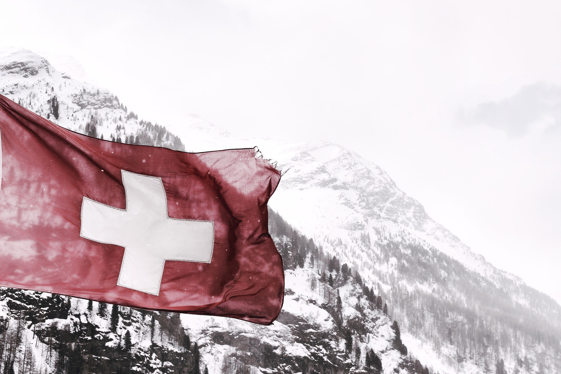 Niche eCommerce Markets in Switzerland