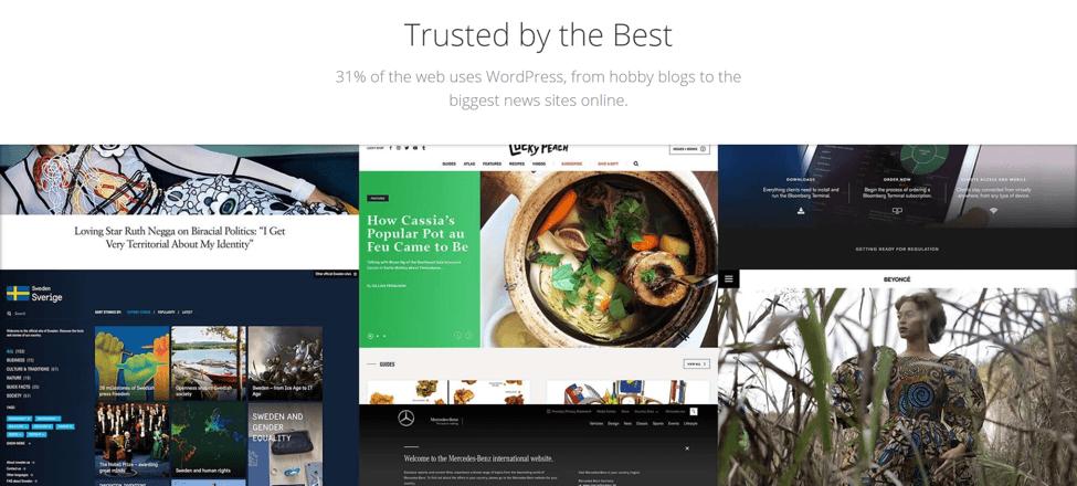 blog monetization tools