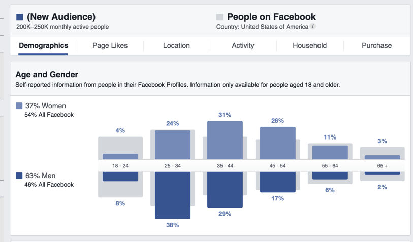 Facebook marketing strategy: audience insights