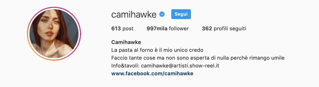 biografia di instagram