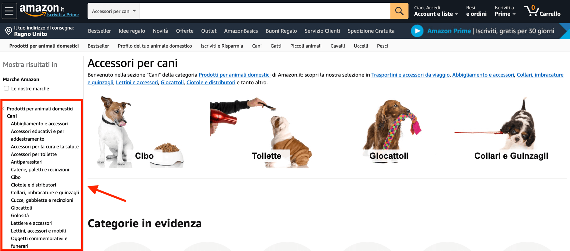 nicchia di mercato Amazon