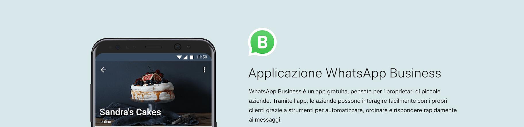 Applicazione WhatsApp Business