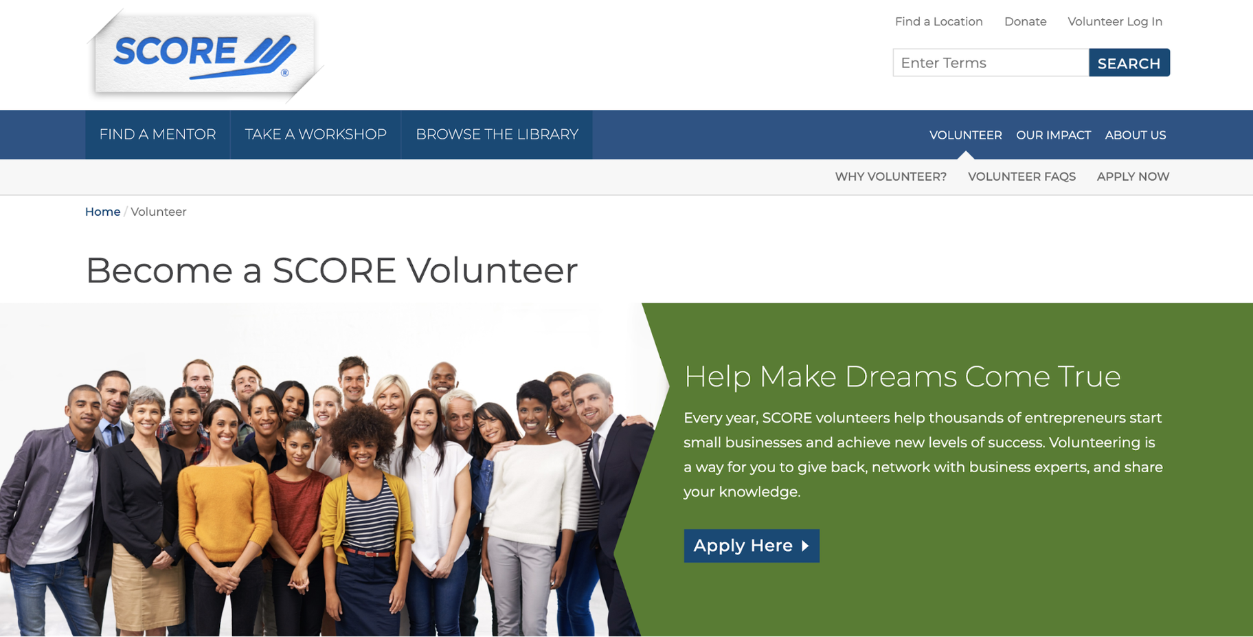Volunteer to Help Small Businesses