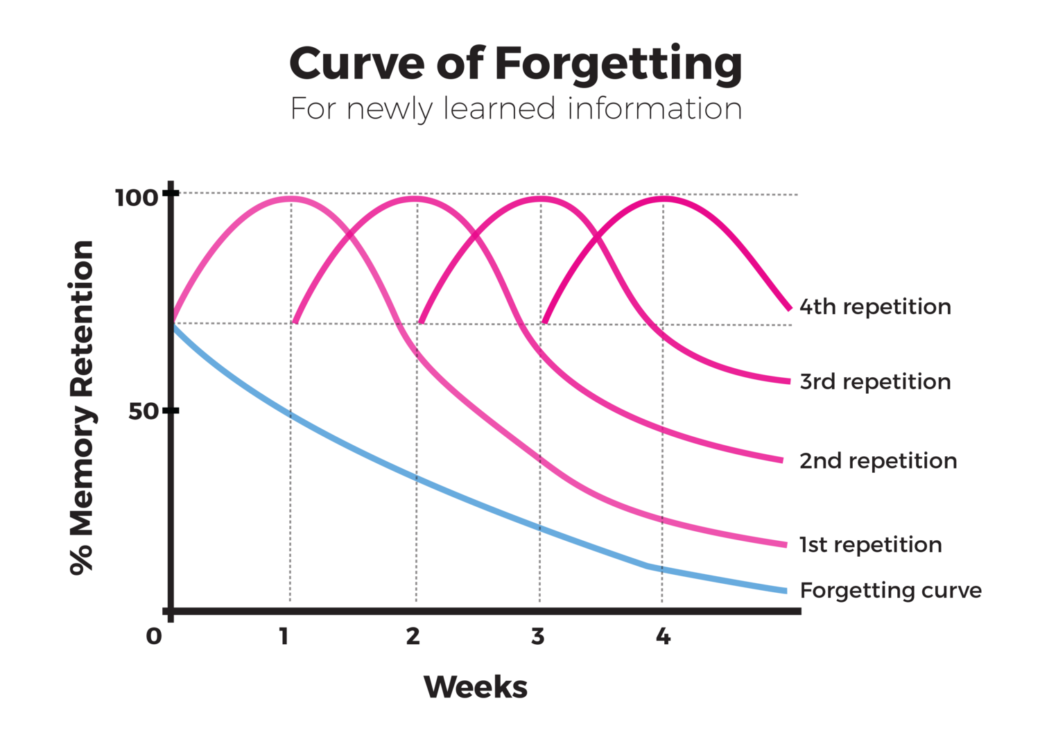 Tips on How to Memorize Anything: Curve of Forgetting