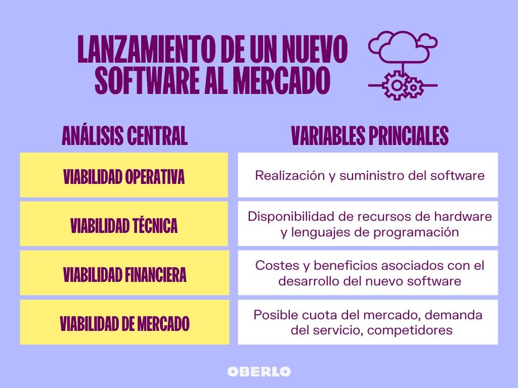 viabilidad de un proyecto ejemplo de startup de software