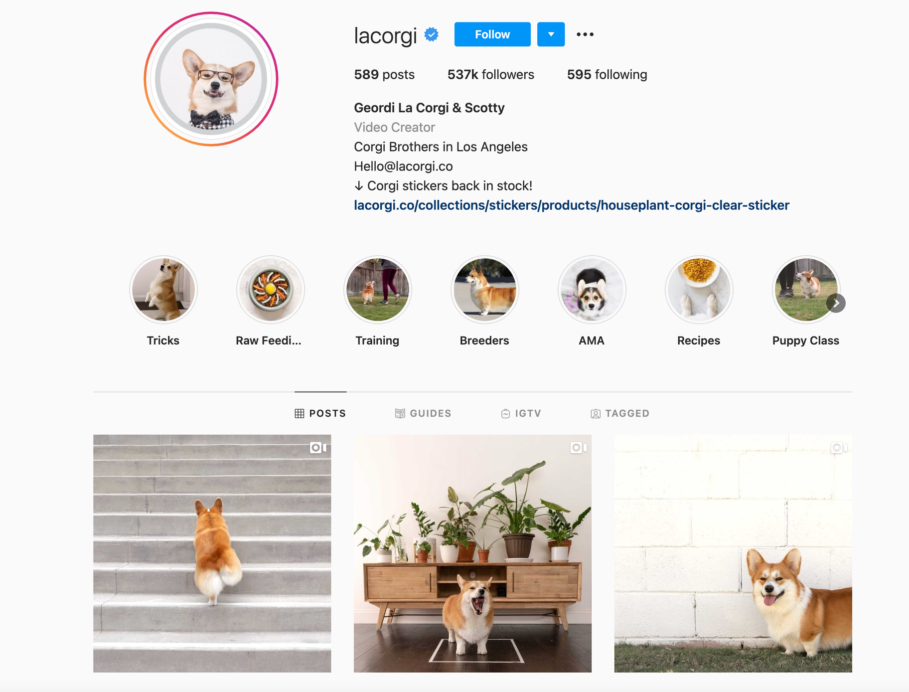 Instagram consistent branding