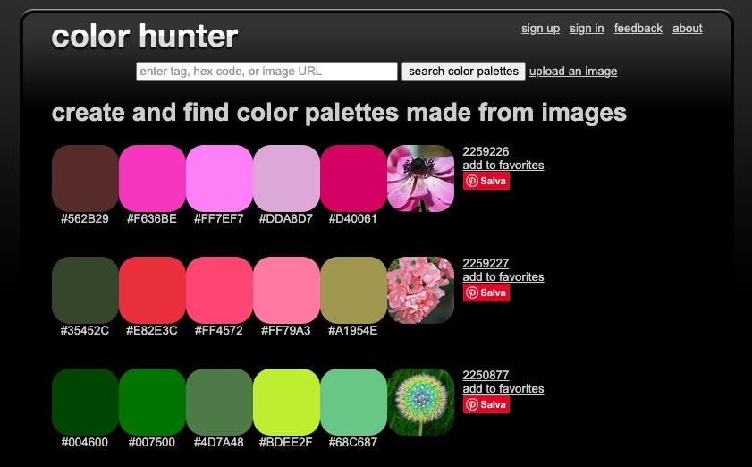 Color hunter: creare palette online gratis da foto