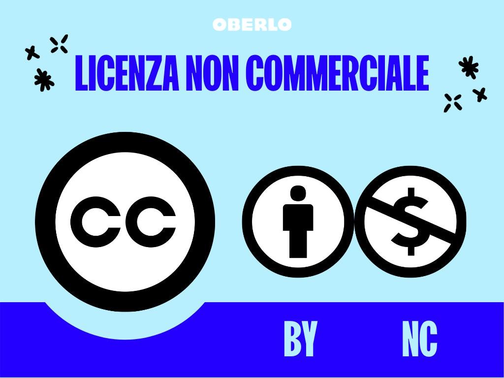 Creative Commons: licenza non commerciale logo