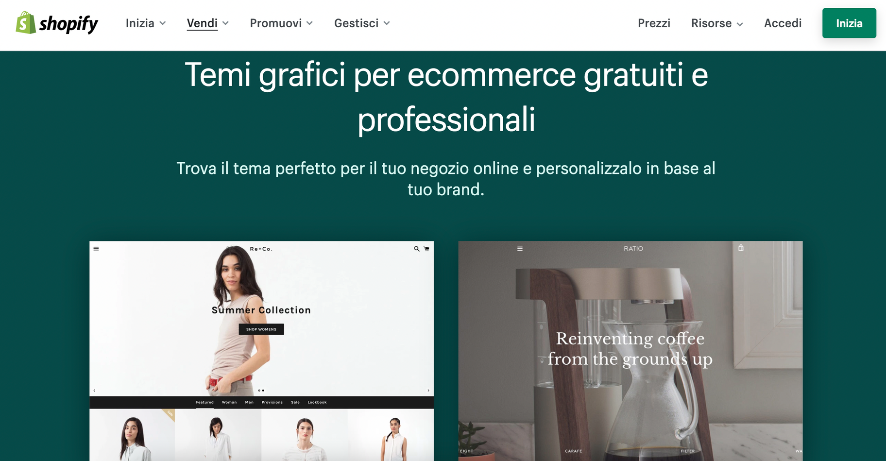 web design temi shopify