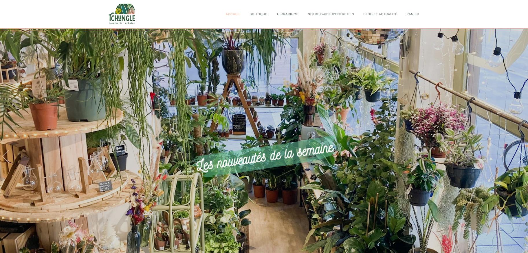 Site Shopify Tchungle
