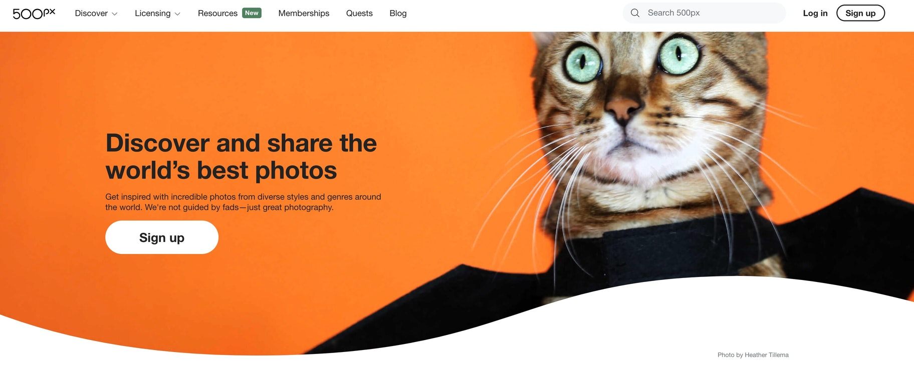 best places to sell photos online: 500px